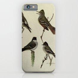 Olive-sided Flycatcher, Crested Flycatcher, Kingbird, Phoebe14 iPhone Case