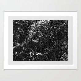 Brackish Domain Art Print