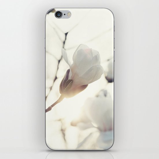 Four iPhone & iPod Skin