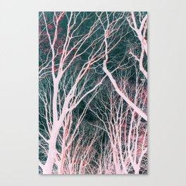 Scarlet Forest Canvas Print