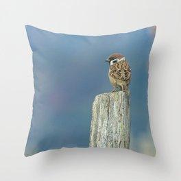 Passerotto-young sparrow Throw Pillow