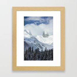 Beautiful Bugaboos Framed Art Print