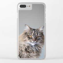 Royal Tom cat : Look into my eyes Clear iPhone Case
