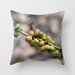 Illustration Coffee Beans Throw Pillow