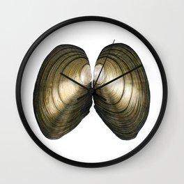 Duck Mussel (Anadonta anatina) Wall Clock