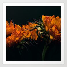 Sunfire Art Print