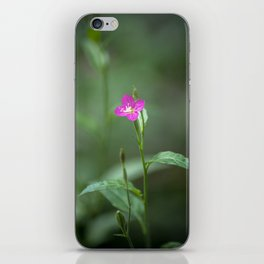 Blooming amid the darkened forest iPhone Skin