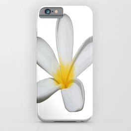 A Single Plumeria Flower Isolated iPhone Case