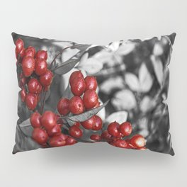 Passion Fruit. Pillow Sham