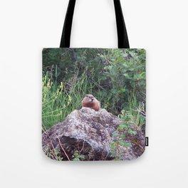 Groundhog on a Rock Tote Bag
