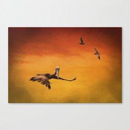 Pelican Heaven Canvas Print