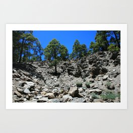 View of a rocky hillside in the Canary Islands Art Print