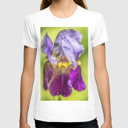 Purple Iris 2018 T-shirt