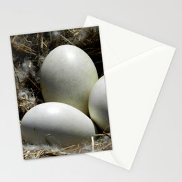 In the Nest Stationery Cards