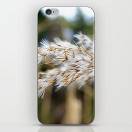 Gras iPhone Skin