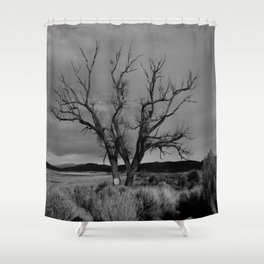 One Lonely Tree Shower Curtain