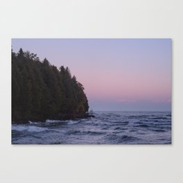 Pines at Whitefish Canvas Print