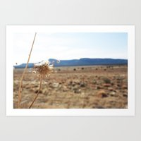 arizona Art Prints featuring Arizona by Kakel-photography