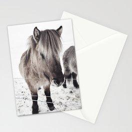 snowy Icelandic horse bw Stationery Cards
