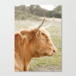 Highlander I Canvas Print