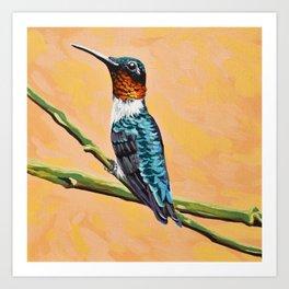 Ruby-throated Hummingbird Male Art Print