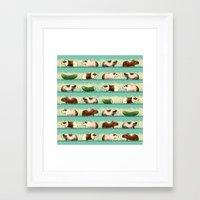 guinea pig Framed Art Prints featuring Guinea Pig Congo by Patmai
