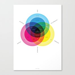 What is data visualization? Canvas Print