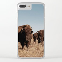 back in the tallgrass Clear iPhone Case