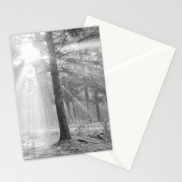 A light through the forest - Black and white - North Kessock, Highlands, Scotland Stationery Cards