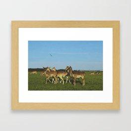 Oh Deer (Artistic/Alternative) Framed Art Print