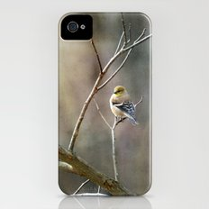 Morning Goldfinch iPhone (4, 4s) Slim Case