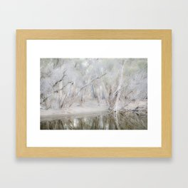 Paperbark Trees along Beaufort River Framed Art Print
