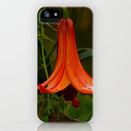 Wild Lily Love iPhone Case