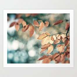 Teal Brown Nature Photography, Aqua Blue Copper Leaves, Turquoise Leaf Tree Branches, Fall Autumn Art Print