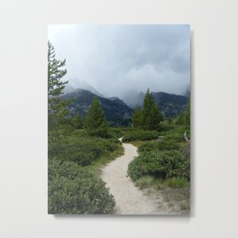 MAY YOUR TRAILS BE CROOKED Metal Print