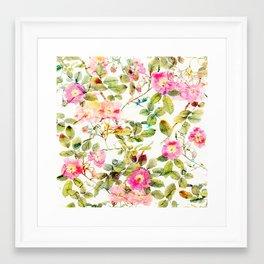 soft pink rosebush Framed Art Print