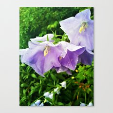 Rain drops in the Garden Canvas Print