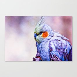 # 420 Canvas Print