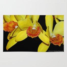 Cattleya Orchid Rug