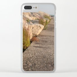 Walk along the water Clear iPhone Case