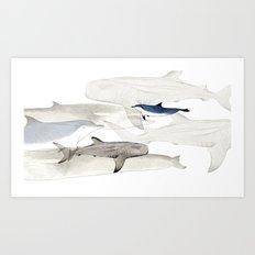 Life Aquatic Art Print
