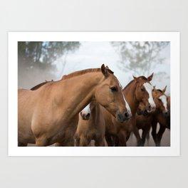 Estancia Horses Art Print