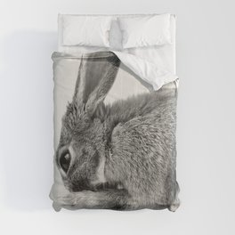 Rabbit Animal Photography Comforters