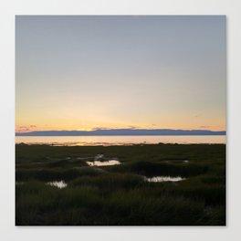 Quebec Marsh Canvas Print