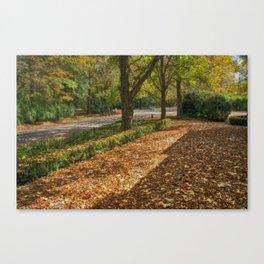 Pure Autumn Canvas Print