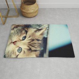 CAT, KATZE Rug