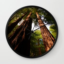 Redwood Tree Tops Wall Clock