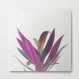 Boat Lily Metal Print