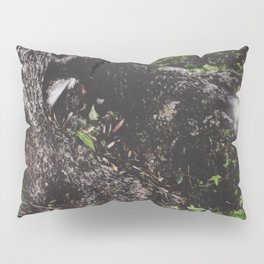 Pixie Hollow Pillow Sham