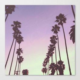 Palms on Palms Canvas Print